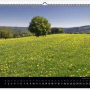 "Wandkalender ""Eifelliebe 2019"" - Eifelkalender, Rureifel, Rursee und Umgebung"